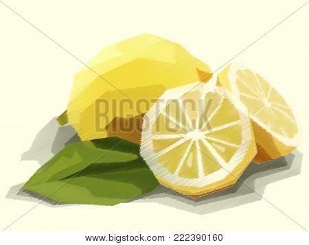 Vector Illustration Graphic Arts Sketch Of Drawing Fruit Yellow Lemon With Halves.