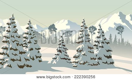 Horizontal vector illustration of snowy spruce trees and coniferous forest with mountains.