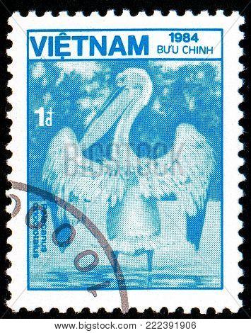Ukraine - circa 2018: A postage stamp printed in Vietnam show bird Great White Pelican or Pelecanus onocrotalus. Series: Fauna and Flora. Circa 1984.