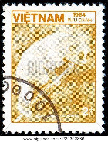 Ukraine - circa 2018: A postage stamp printed in Vietnam show Sunda Slow Loris or Nycticebus coucang. Series: Fauna and Flora. Circa 1984.