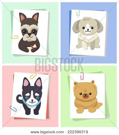 Dogs with happy expression on face, puppy with collar, sitting tranquility, pet with bone and bow of red color, isolated on vector illustration