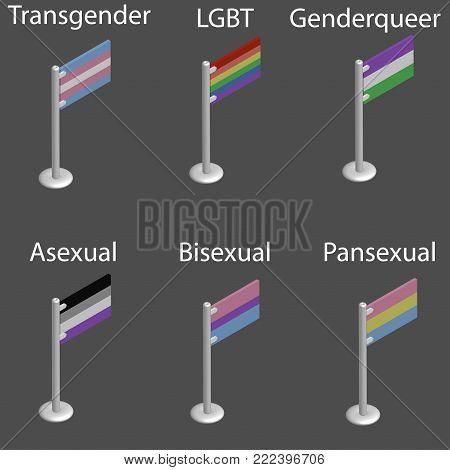 flags set of LGBT: transgender, queer, asexual, pansexual,bisexual