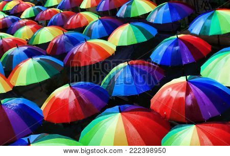 Colorful umbrellas urban street decoration. View of umbrellas from above.