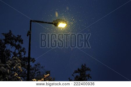 Street lamp in a snowy winter night. Warm Glow of Street Light Surrounded by Snowflakes.