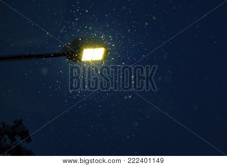 Close-up of a street lamp in a snowy winter night. Warm Glow of Street Light Surrounded by Snowflakes.