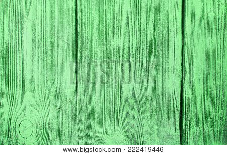 Green Wood Surface background. Green background of old boards