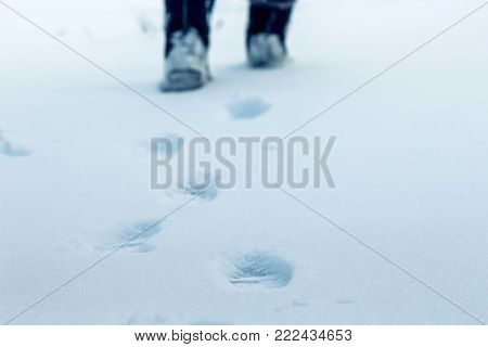 on a winter day on the snow traces of human legs are visible, in the distance one can see feet, a symbol of purposefulness and movement forward