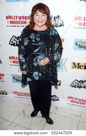 LOS ANGELES - JAN 10:  Patrika Darbo at the Batman '66 Retrospective and Batman Exhibit Opening Night at the Hollywood Museum on January 10, 2018 in Los Angeles, CA