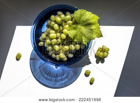 Green grapes in a blue glass vase in the sun view from above