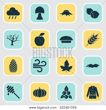 Autumn icons set with timber, cedar, apple and other filbert elements. Isolated vector illustration autumn icons.