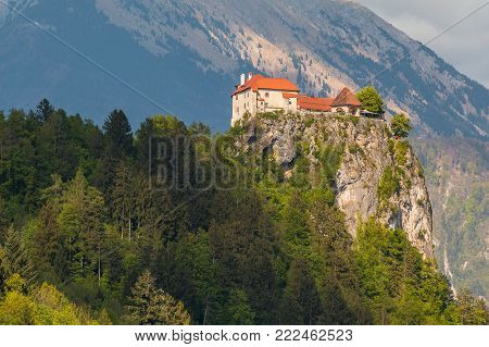 View Of Bled Castle On The Bled Lake