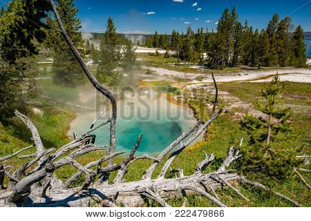 Hot thermal spring in Yellowstone National Park, West Thumb Geyser Basin area, Wyoming, USA