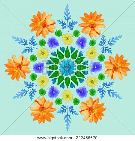 Natural mandala from dried pressed flowers, petals and leaves. Mandala is symbol of meditation, Buddhism, Hinduism, yoga. Geometric mandala drawing made by plants on green background.