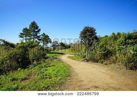 Long path to go to Phu Chee Fa, Chiang Rai, Thailand