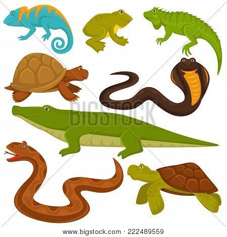 Reptiles and reptilian animals vector icons of turtle, crocodile or chameleon and iguana lizard, snake and frog. Flat set of land and marine reptiles for zoology or zoo design