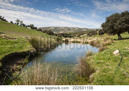 Water hole for cattle in Toledo Mountains, Ciudad Real Province, Spain