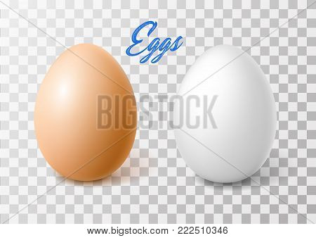 Vectro realistic 3d chicken eggs with brown, white eggshell. Easter holiday spring symbol organic raw natural farm product. Healthy eating lifestyle advertising. Illustration transparent background