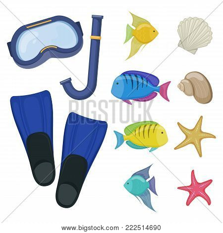 Diving mask and flippers on white background, cartoon illustration of beach accessories for scuba diving. Vector
