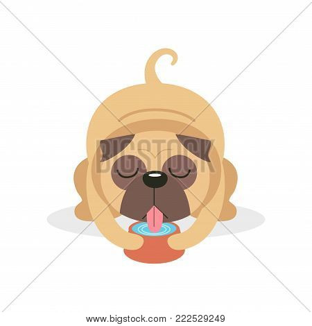 Cute pug dog character drinking water from a bowl, pet dog cartoon vector Illustration on a white background
