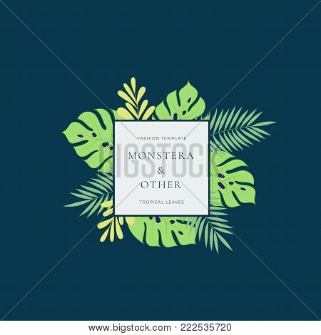 Monstera Tropical Leaves Fashion Sign or Logo Template. Abstract Green Foliage with Square Border and Classy Typography. Dark Blue Background.