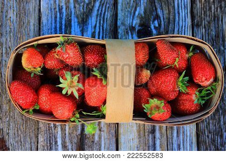 Summer vacation. Summer berries. Strawberries on the wooden table. Strawberry background. Fresh summer berries in the garden on table. Strawberries in a wicker basket. Juicy red berries and leaves on the wooden table. Delicious and healthy vegetarian food