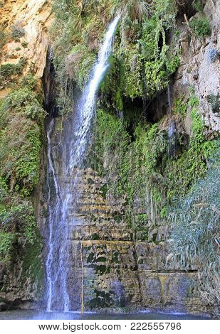Ein Gedi - Nature Reserve and National Park, Israel
