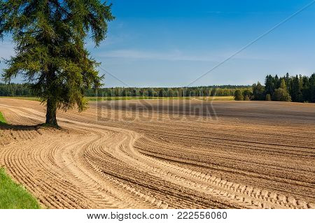 The plowed field. Furrow go to the horizon. The sowing of winter crops. Agricultural work. Sandy soil. Loam. Poor soils.