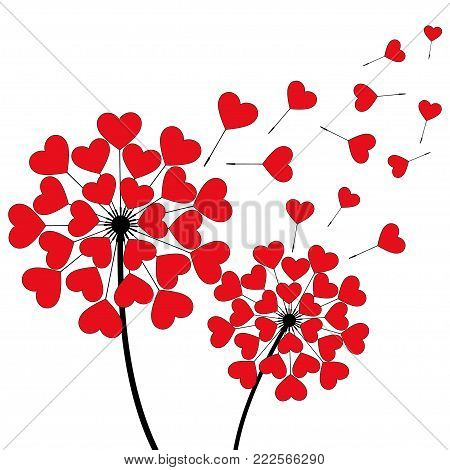 Two beautiful stylized black dandelions blowing isolated on white background. Floral stylish trendy wallpaper with spring, summer flowers and red flying fluff heart shaped. Modern love backdrop. Vector illustration