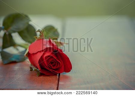 Vintage beautiful Red rose flower on wooden table and home garden background. Romantic table setting, Valentine day celebration, Love concept, Positive thinking concept.