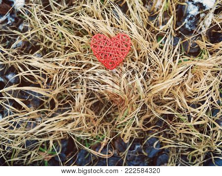 The red wicker heart is on the dried yellowed grass. There are black rotted leaves all around. Grim autumn or winter background, as well as for Valentine's Day