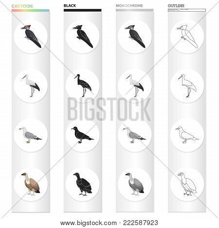 Forest bird, woodpecker, stork, seagull, vulture. Bird set collection icons in cartoon black monochrome outline style vector symbol stock illustration .