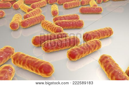 Escherichia coli bacteria, 3D illustration. Gram-negative bacteria, part of normal intestinal microflora and also causes enteric and other infections