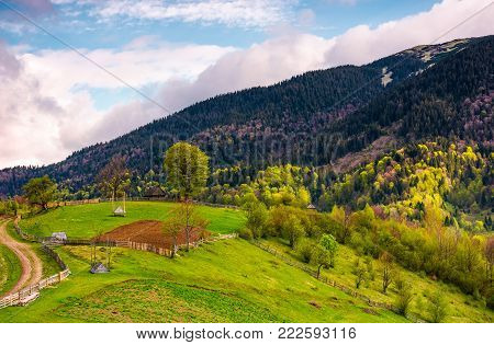 grassy rural hill in mountains. lovely agricultural scenery with country road, wooden fence and sheds in springtime.
