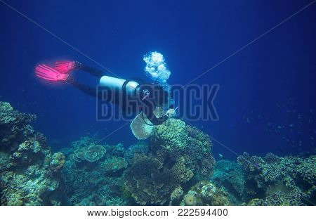 Diver in blue sea. Diving equipment in open water course. PADI instructor in sea. Diving man underwater photo. Diver explores coral reef wall. Breath underwater. Deep sea exploration. Coral reef dive