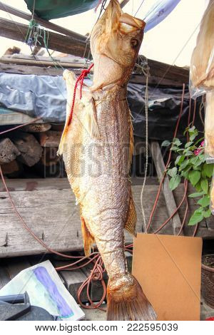 A salted fish is hung to dry in the sun in Tai O, a fishing village in Hong Kong's Lantau Island. Dried seafood delicacies are popular Chinese cuisine ingredients, especially during Chinese New Year.