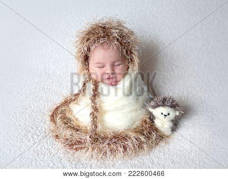 Cute newborn in hedgehog costume