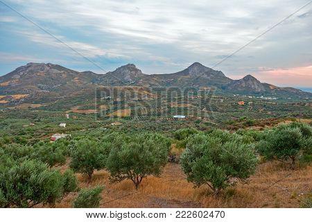 Rural Landscape With Farm Fields, Plants And Gardens On Crete Island, Greece