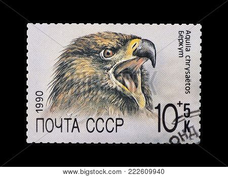 SOVIET UNION - CIRCA 1990 : Cancelled postage stamp printed by Soviet Union, that shows Golden Eagle.