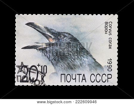 SOVIET UNION - CIRCA 1990 : Cancelled postage stamp printed by Soviet Union, that shows Common Raven.