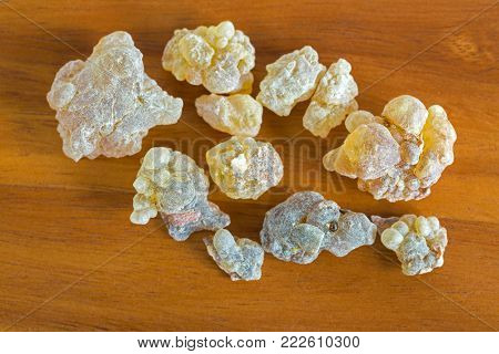 Big pieces of Aromatic yellow resin gum from Sudanese Frankincense tree, Closeup texture of incense made by slashing bark of Boswellia sacra tree in Etiopia (Boswellia Papyrifera)