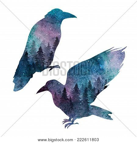 Two ravens with the spruce forest and the starry sky inside. Double exposure effect composition painted in watercolor.