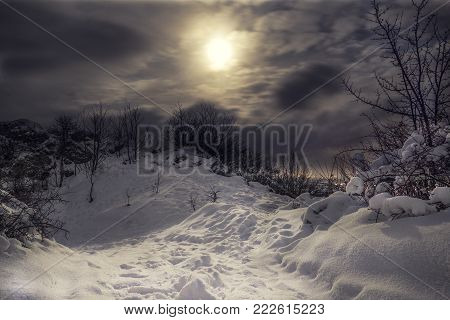 Snowy and frozen Top of hill with cloudy night sky and moonlight with city lights on the background.  Forest in Slovakia on the mountain covered with snow.