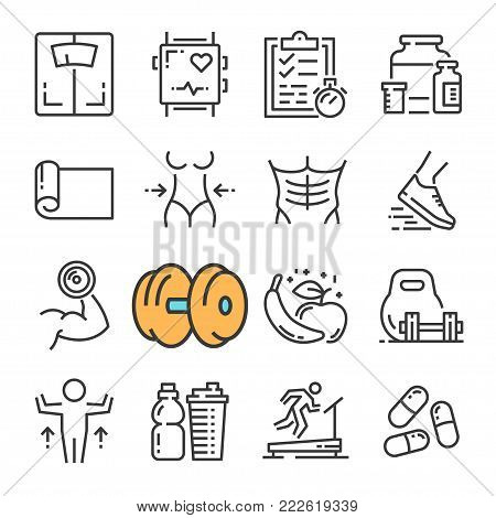 Vector black line Fitness Gym Equipment, Sports Recreation Activity icons set. Includes such Icons as Equipment Fitness, Body Woman and Man, Training. Pictogram
