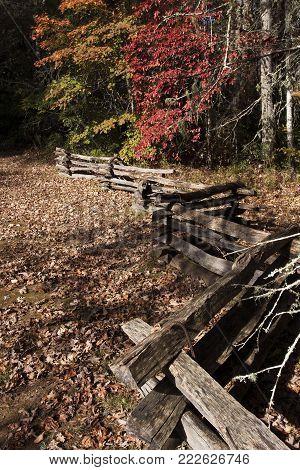 Split rail fence zigzags through a field in the Pisgah Forest near Brevard, North Carolina in autumn