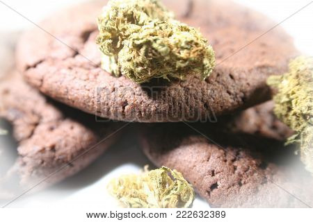 Chocolate Marijuana Cookies With Bud High Quality Stock Photo