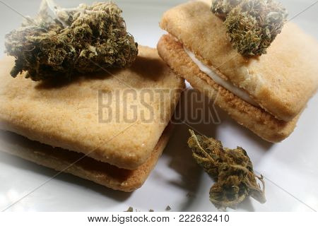 Marijuana Edibles With Bud On Cookies High Quality Stock Photo