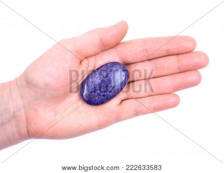 Top grade charoite palm stone from Sakha Republic, Siberia, Russia