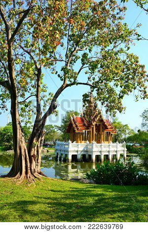 Beautiful pavilion Thai style temple on water has a tree and garden  front in  public parkland Suan Luang R.9 in Bangkok Thailand