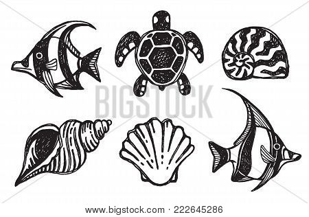 A set of sea creature icons - shells, fish and turtles. Vector illustration.