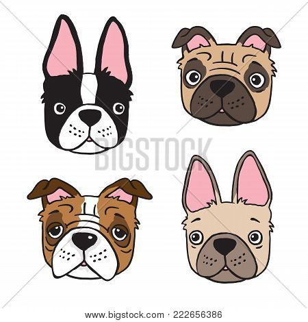 Cartoon drawing of four dog faces: Boston Terrier, Pug, Bulldog and French Bulldog. Vector file.
